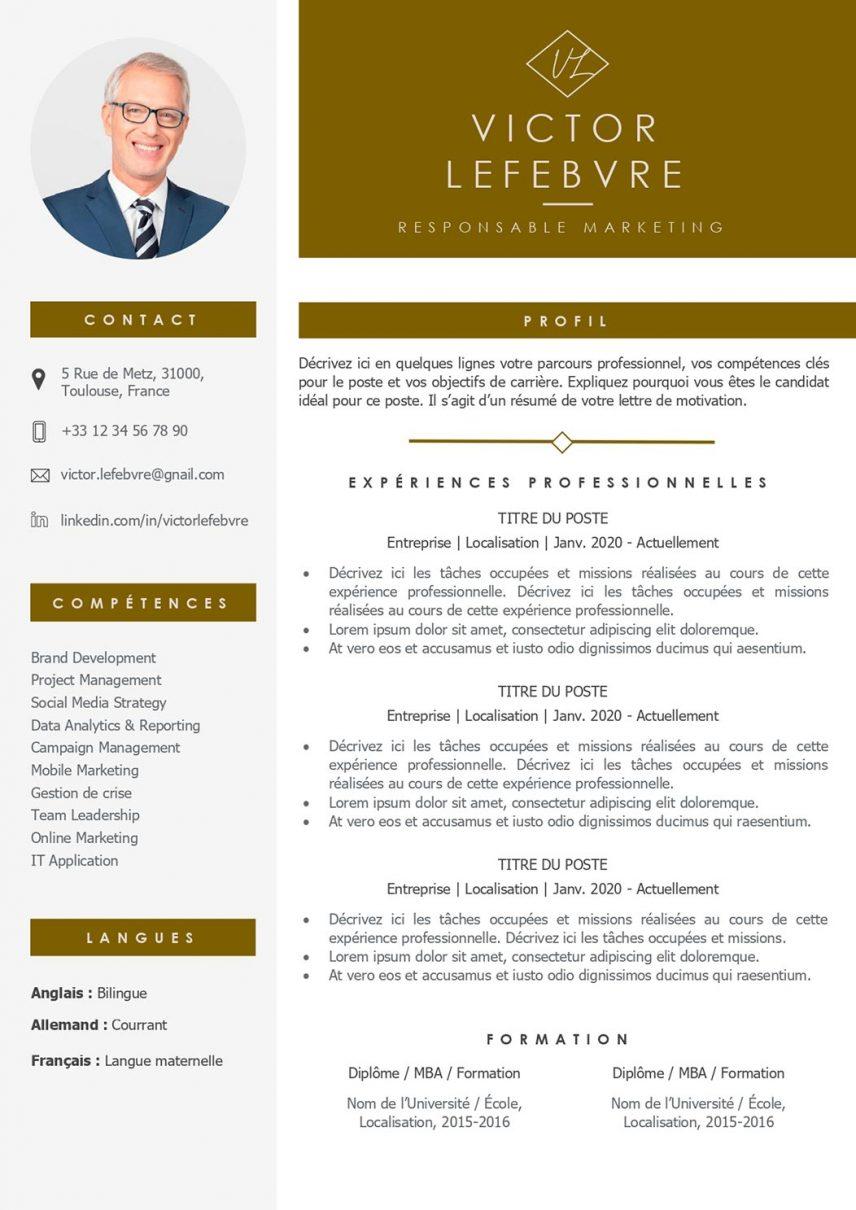 modele-de-cv-dubai-pret-a-remplir-word-2013d