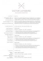 modele-de-cv-londres-pret-a-remplir-word-2010b