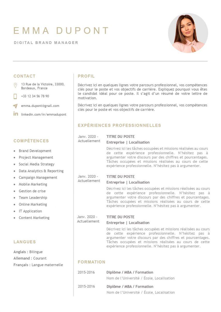 modele-de-cv-paris-pret-a-remplir-word-203a