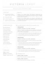 modele-de-cv-tokyo-pret-a-remplir-word-201c